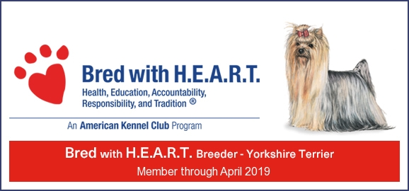 Bred With Heart an American Kennel Club Program