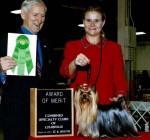 Studly Award of Merit at Specialty
